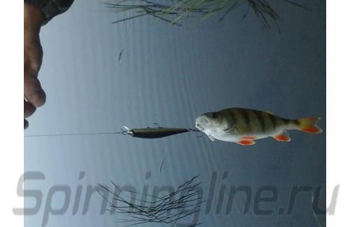Воблер Zipbaits Rigge 90F 840 - фотография загружена пользователем 1