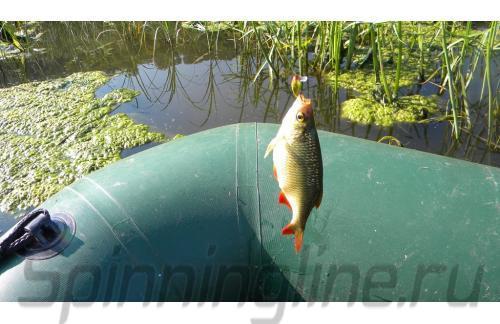 Воблер Jackall Area Man Crank 22S red & gold - фотография загружена пользователем 6