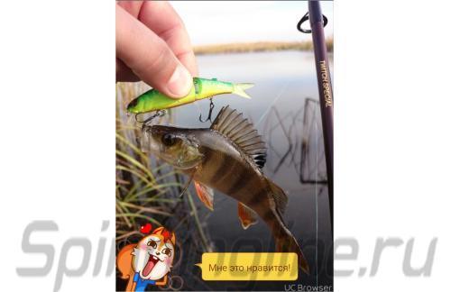 Воблер Jackall Tiny Magallon matt tiger - фотография загружена пользователем 10